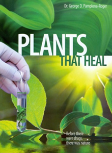 plants that heal natural remedies