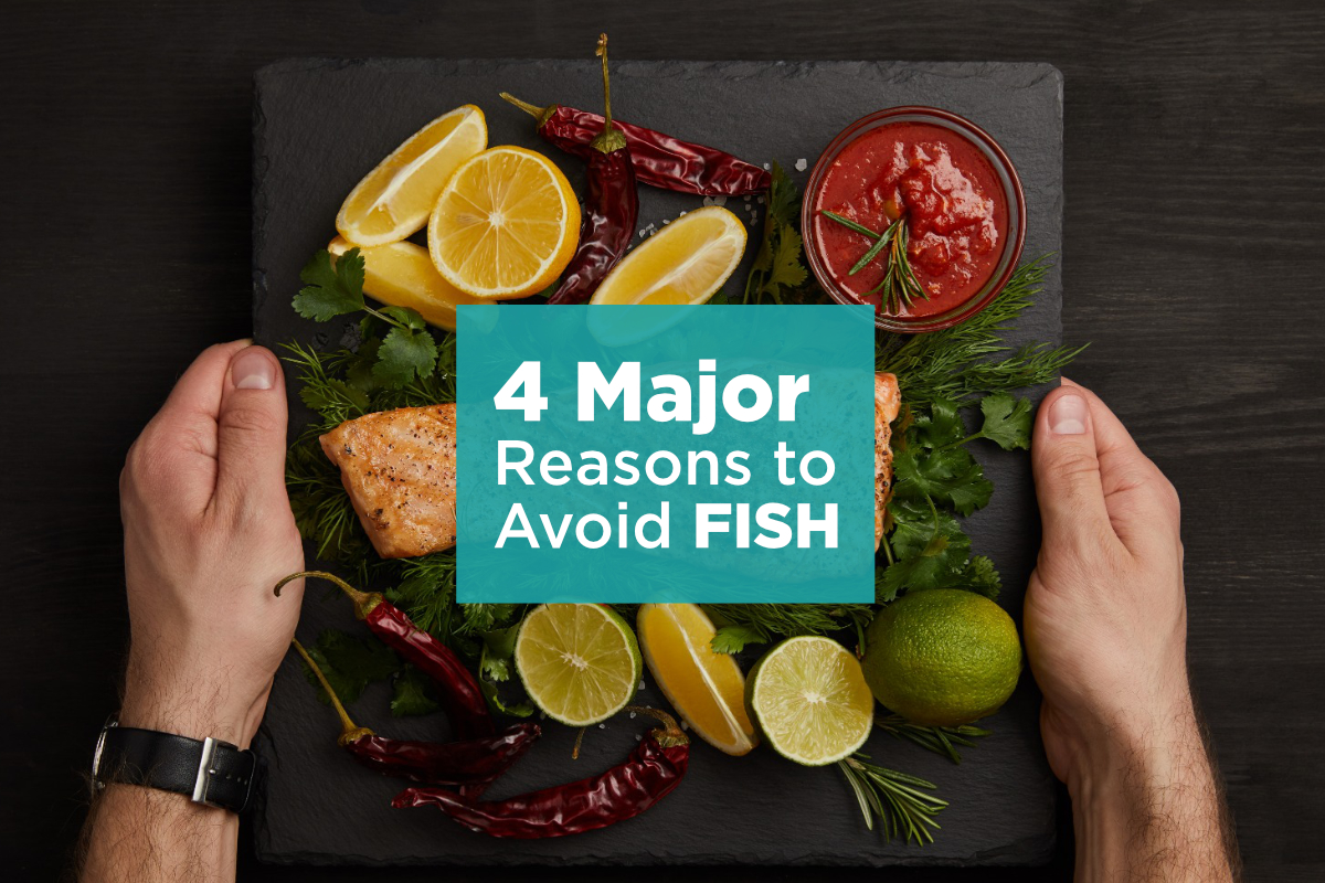 Eden Lifestyle Ministries | Top 4 Reasons to Say NO to Fish and eliminate it from your diet today!