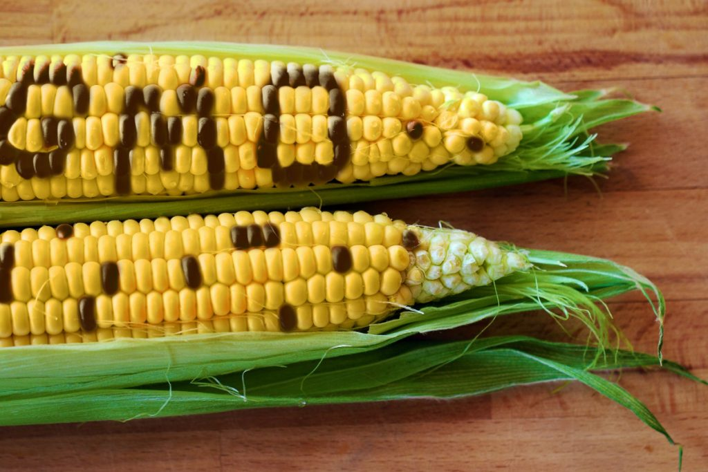 Eden Lifestyle: The Top 10 GMO Foods You Should Avoid